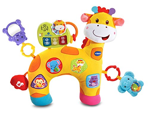 Vtech 80 189300 Peek Amp Play Baby Book Toy Gnawoo